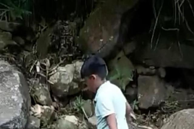 50岁李嘉欣罕见晒娃,9岁儿子皮肤黝黑肉感足,光脚踩石头不娇气