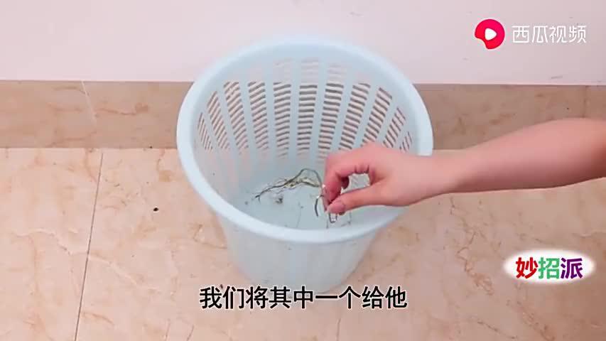 洗碗池放一个窗帘挂钩,作用真厉害,好多人不知道有啥用,快学学