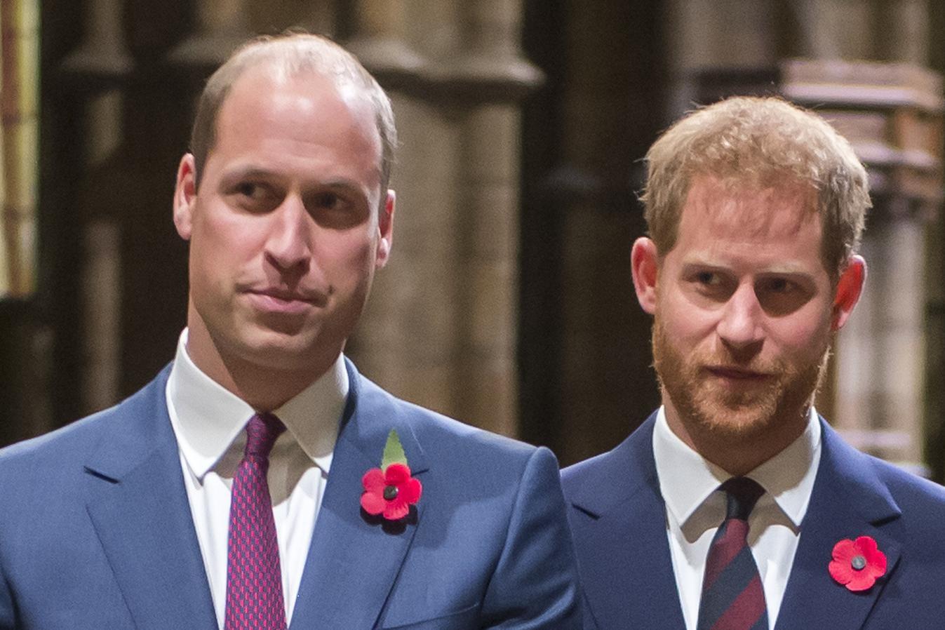 各自继承父母衣钵,威廉与哈里为人处世大不同,王室作家有话说