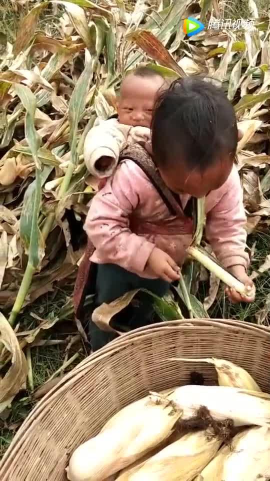 农村的孩子特别懂事,从小就带娃!