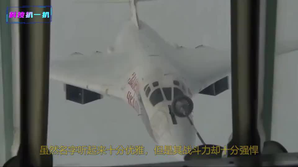 颜值即战斗! ,漂亮的杀手,图-160满满俄式风格专治不服!