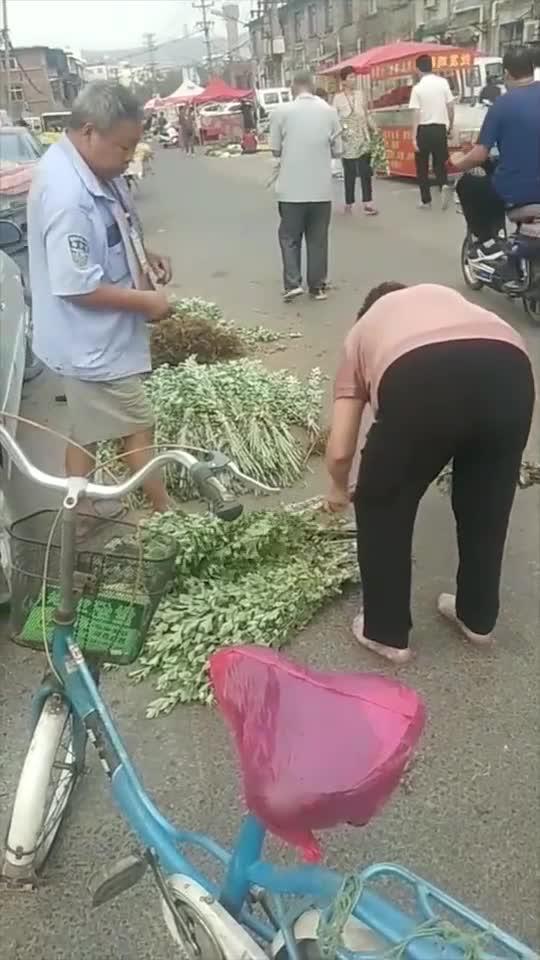 第一次见到卖艾草的,随处可见的东西拿来卖,估计大妈是城里人!
