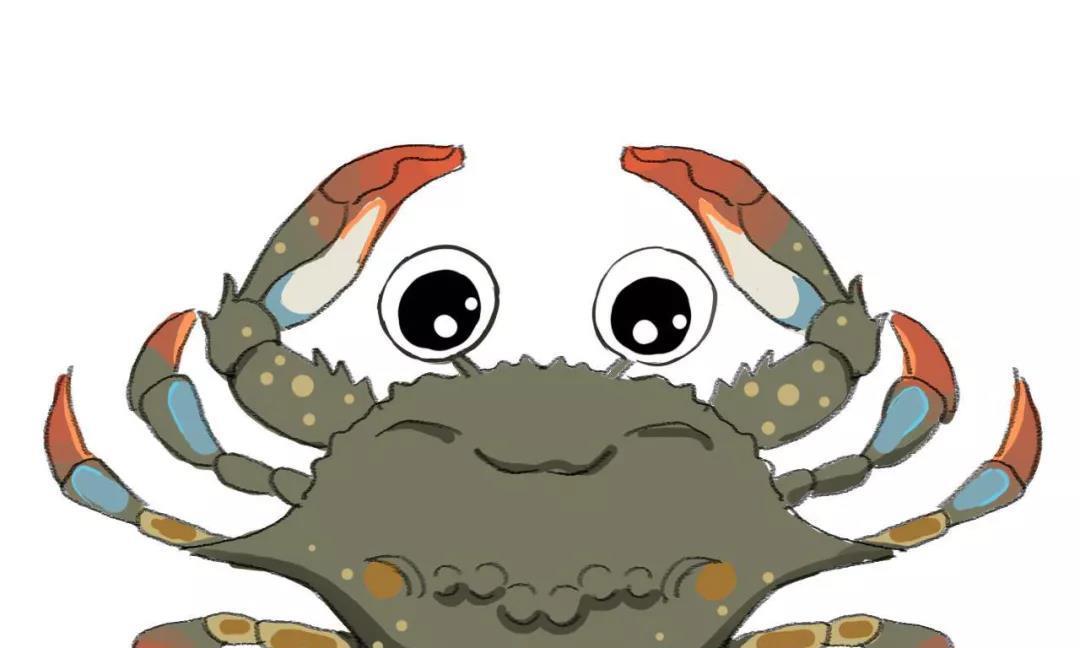 中国捕捞量第一的甲壳类水产,竟是被晒干做成虾皮的毛虾!