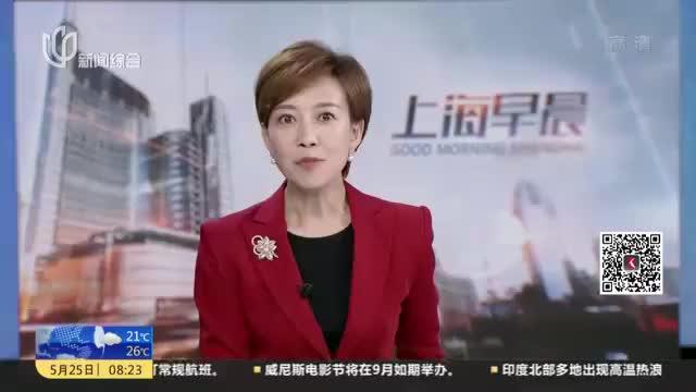 杨浦滨江首批三条观光车游览线路试运行