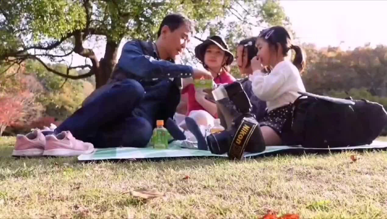 去公园赏红叶,秋日野餐,公园的观赏池里到处都是鱼