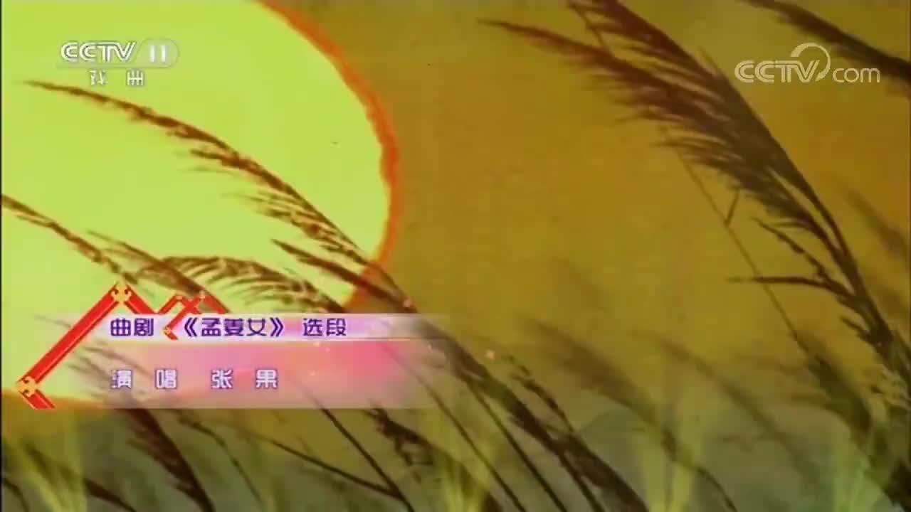曲剧《孟姜女》选段,小戏迷张果唱的好,甩袖功也好!