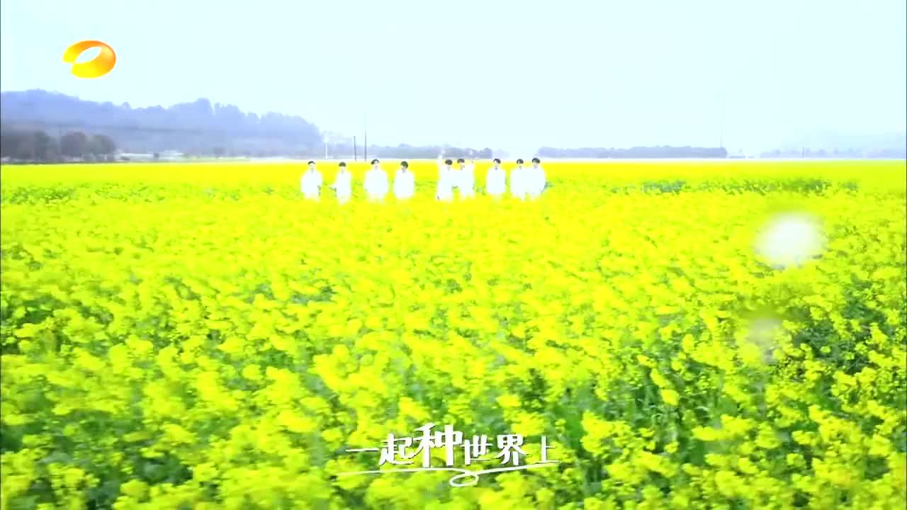 X玖少年团《世界上唯一的花》,帅气的油菜花肖战,妥妥开口跪