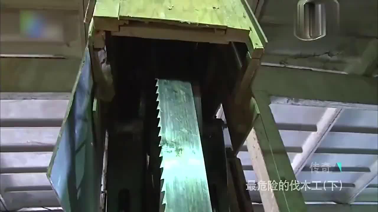 俄罗斯木材生长于严寒环境,木料结实又耐用,备受各国厂商喜爱!