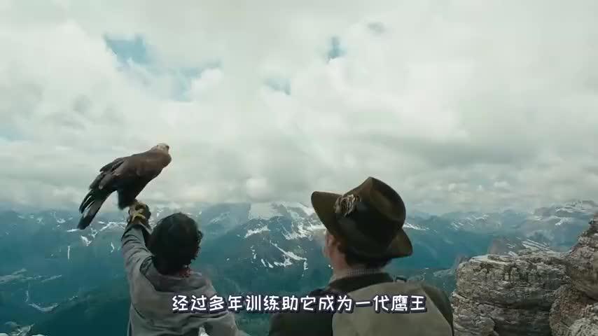 奥地利冒险电影,雏鹰被家族遗弃,小男孩捡回后将他驯成一代鹰王