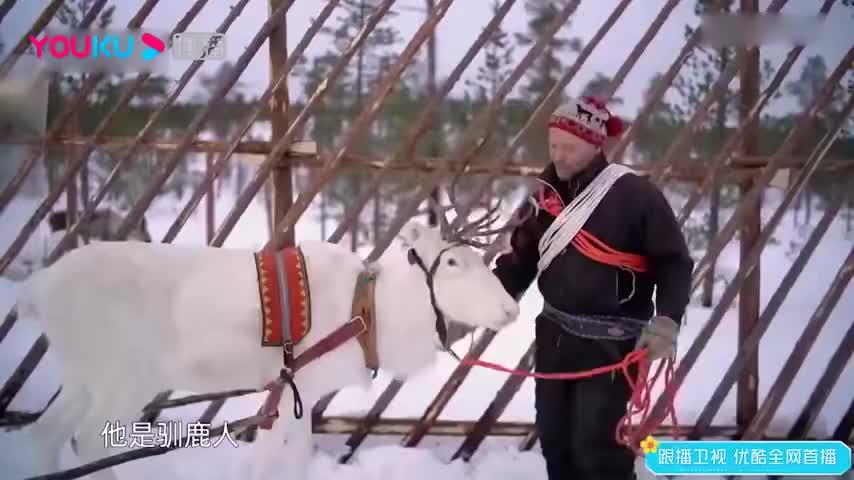 漫游记:驯鹿雪橇之旅开始,佟丽娅脑洞清奇,把导演都逗笑了!