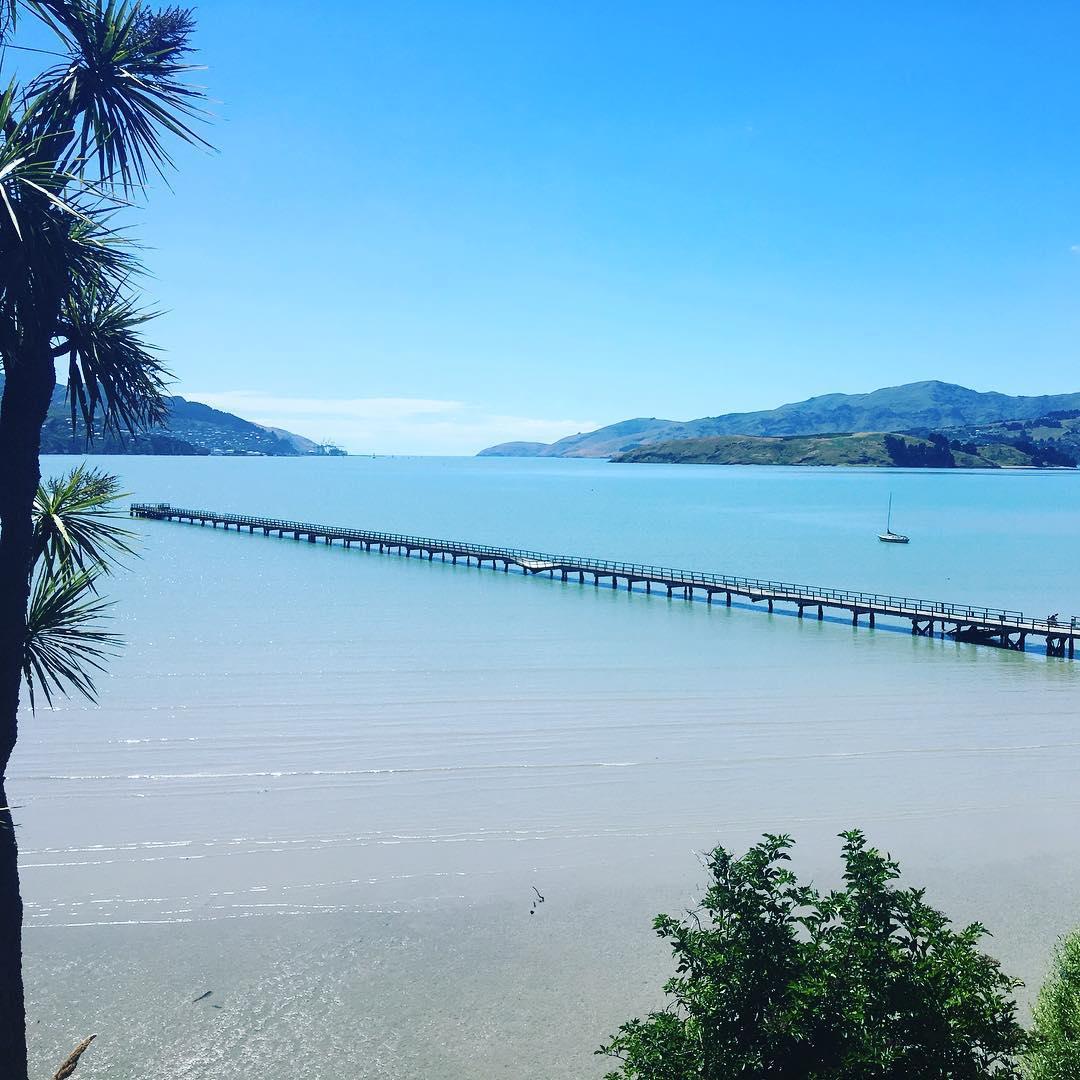 新西兰 基督城 总督湾
