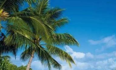 """国内这座城市,被誉为""""东方夏威夷"""",是著名的旅游胜地"""