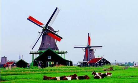 中国游客在荷兰逛博物馆,一进门就尴尬了,荷兰人:少见多怪