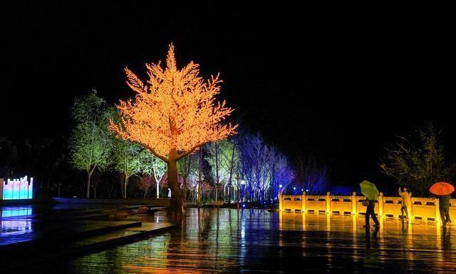 带你提前欣赏示范区淇水关植物园、樱华园灯光夜景