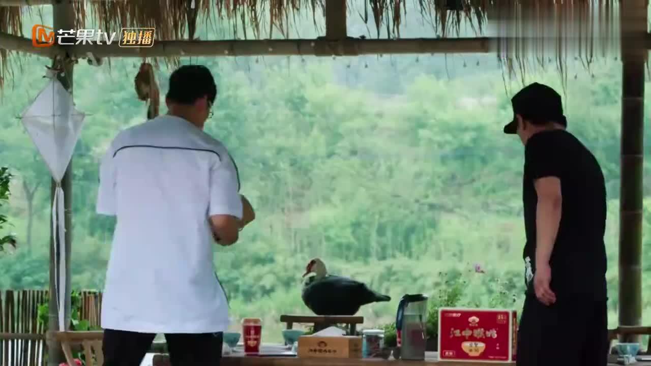 向往2:王迅做客蘑菇屋,带了一大堆茶叶,把黄磊乐坏了!