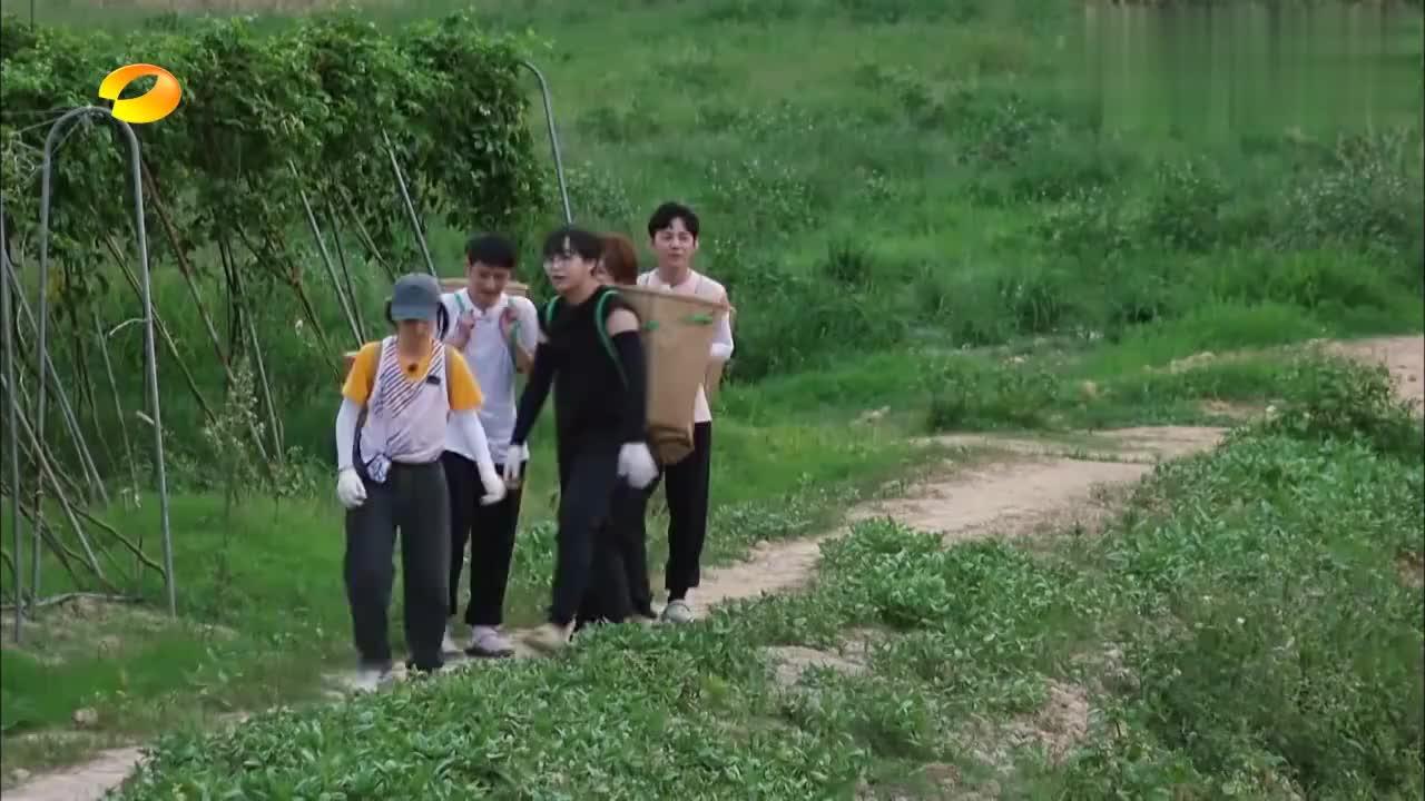 张子枫拿来装百香果的筐子,竟被海涛看中,直接背身上打算带走!