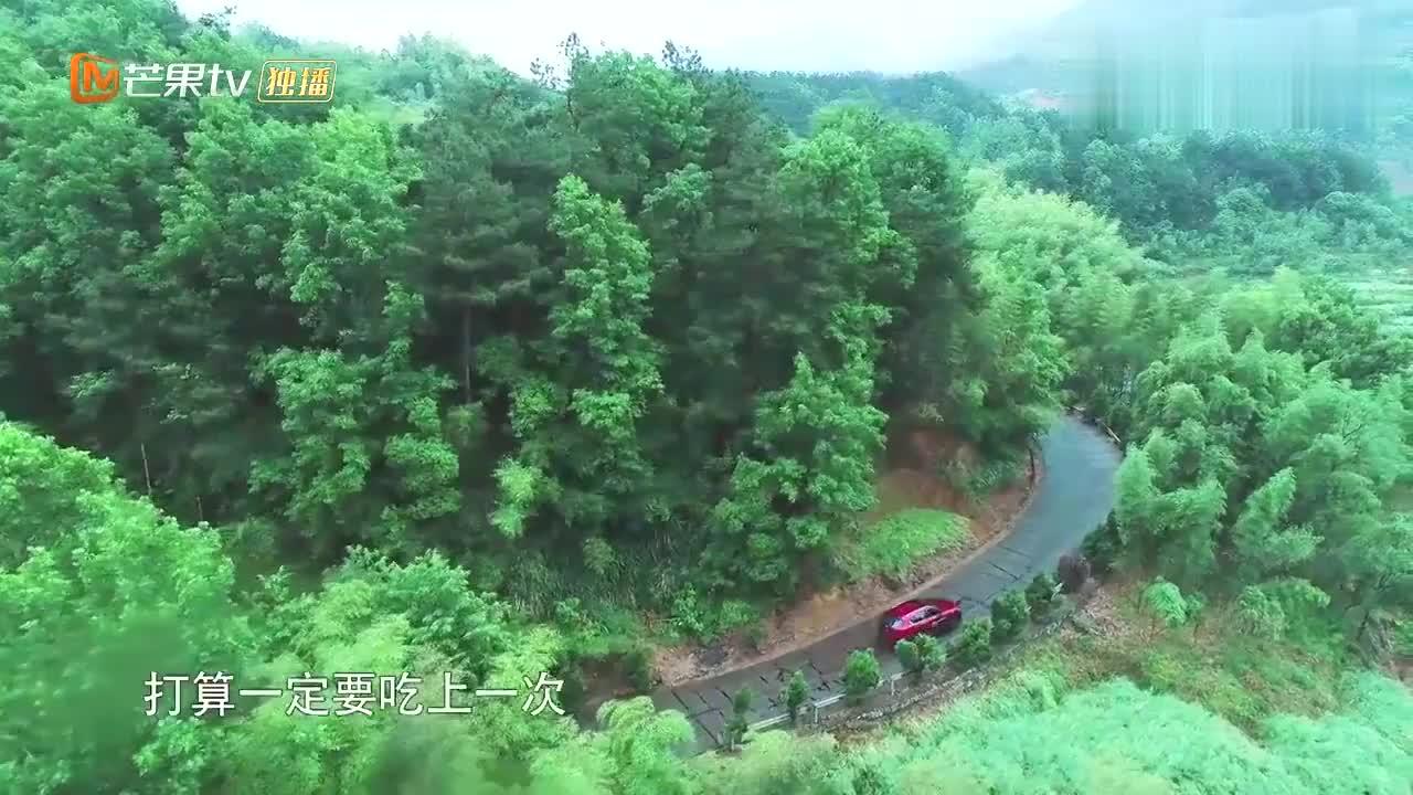 在张子枫的心中,彭昱畅地位竟没有小O小H高去蘑菇屋只为看小狗