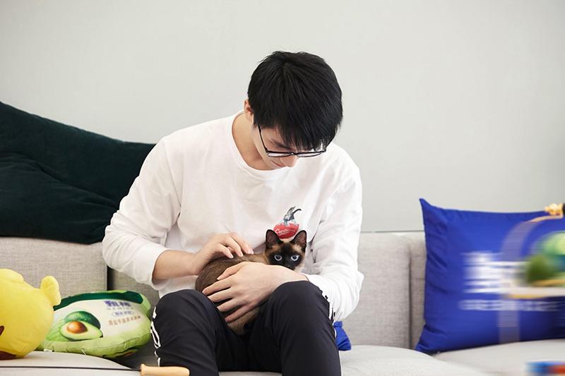 许魏洲《让生活好看》技能满点 温柔上演对猫弹琴