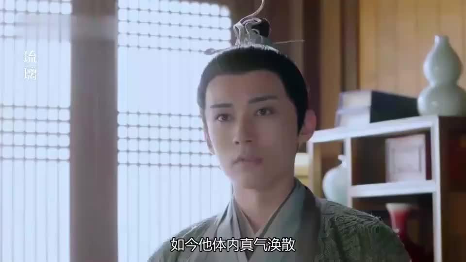 司凤受重伤情况危急,小银花要带她走,璇玑决定冒险救他!