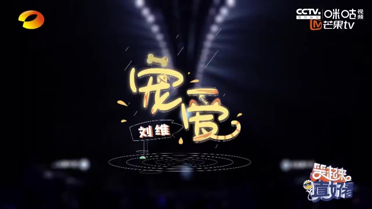 """刘维扮橘猫分享""""争宠秘籍"""" 中华小曲库一言不合就开唱"""
