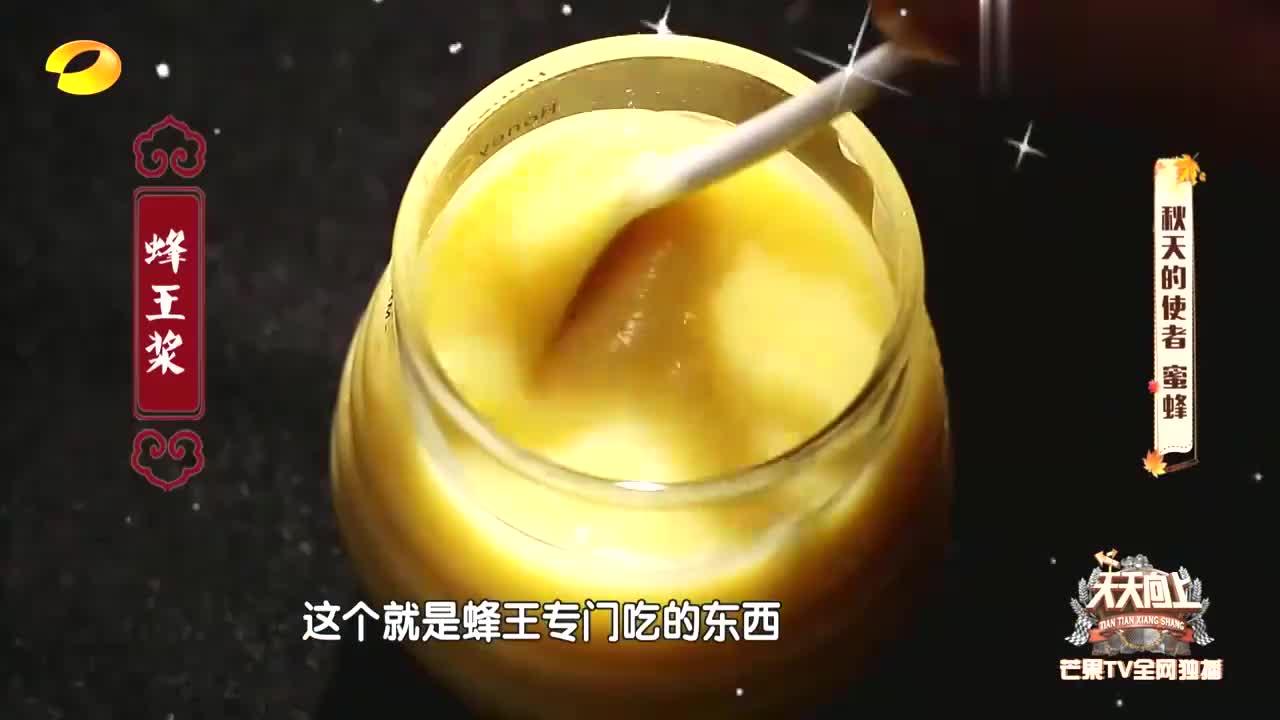 安以轩对蜂王浆难以入口,汪涵直言这是长寿因子,下秒拿着瓶就干