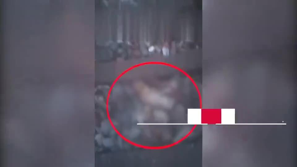 安徽一男子铁轨上看到轧死的狗拍警示视频,下一秒自己被撞身亡
