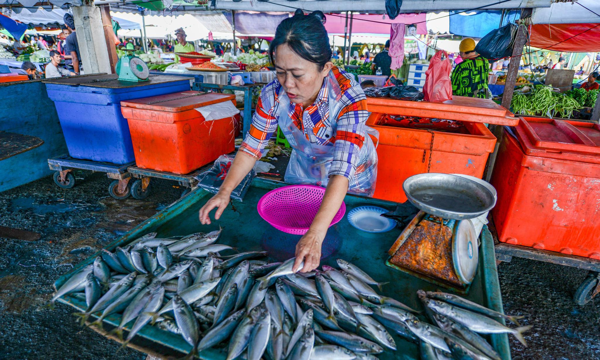 游马来西亚沙巴,像当地人一样逛鱼市,海产物美价廉令人羡慕