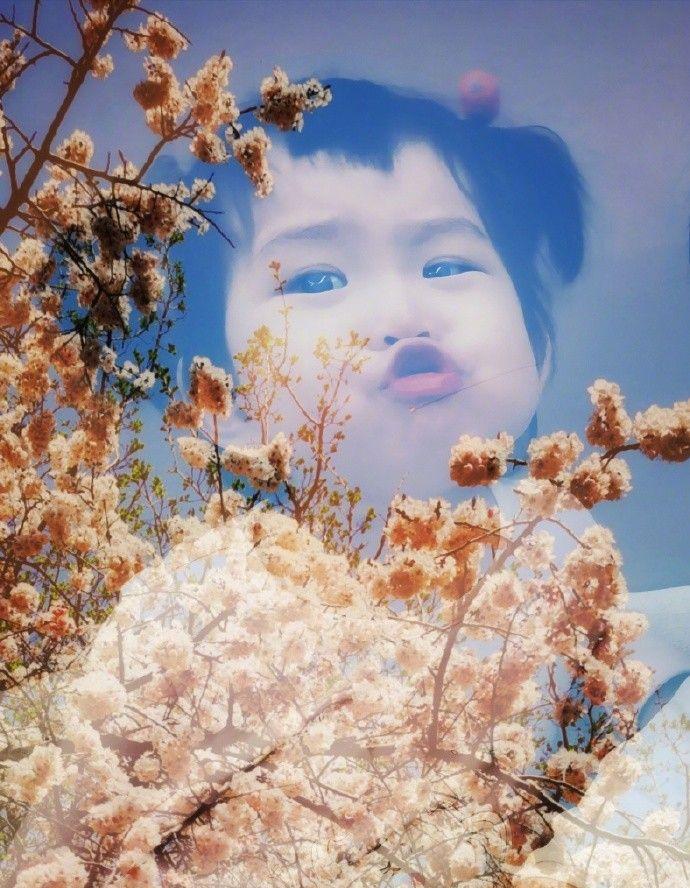 严宽晒艺术照P图技术一流 将全家与美景结合尽显朦胧美