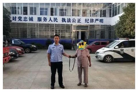 http://n.sinaimg.cn/sinakd10103/0/w480h320/20201004/28a8-izwfpyt9135305.jpg