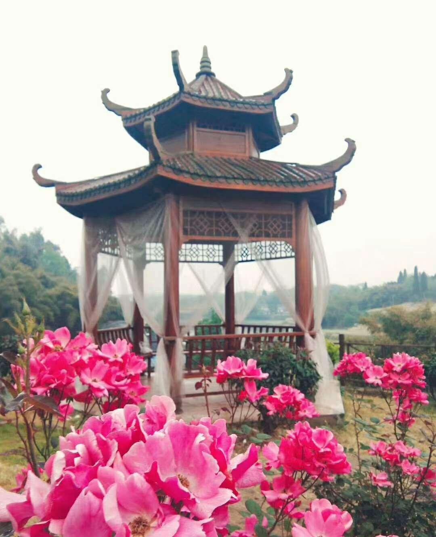 自贡旅游:中国玫瑰海玻璃桥七彩滑道即将亮相,令人期待!