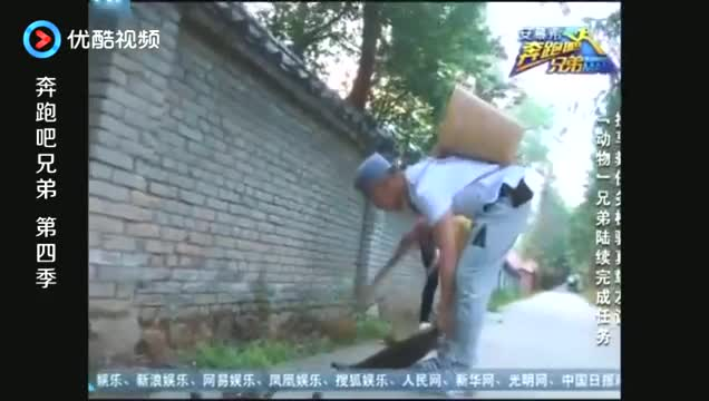 奔跑吧:郑恺帮baby捡马粪,不料接下来发生的事情让他崩溃!