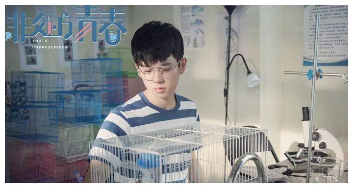 """她曾搭档肖战被称为""""小孙俪"""",新剧搭档北电网红引争议"""
