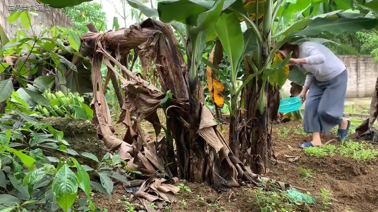 泰国农村气质少妇制作的土豆豆腐顿排骨看着吃的真香