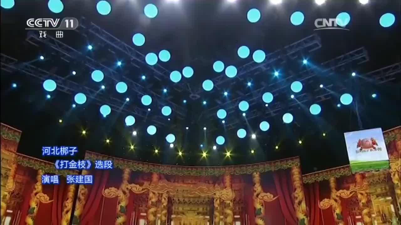 京剧名家张建国反串河北梆子《打金枝》字正腔圆精彩绝伦
