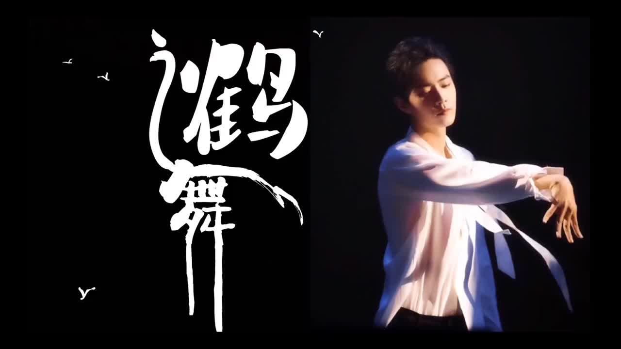 【肖战与鹤】鹤舞