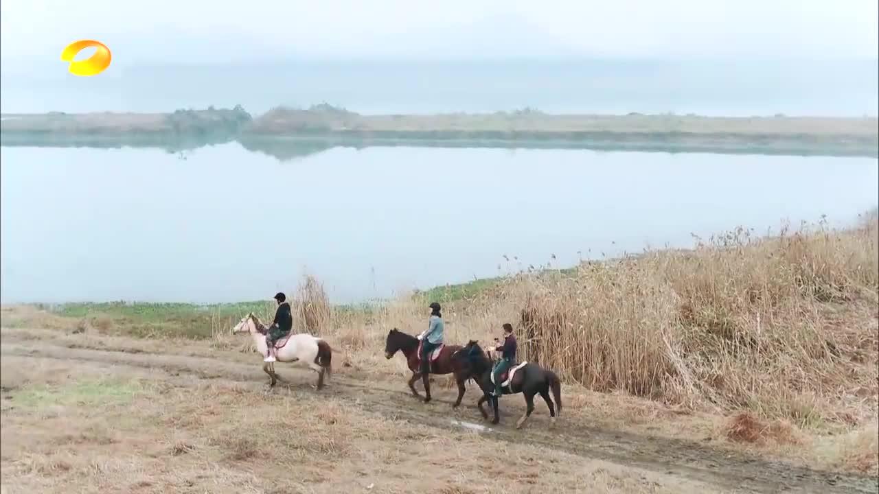 傅园慧穿马术装骑马,有谁注意身后的摄影师,大张伟:太全能了!
