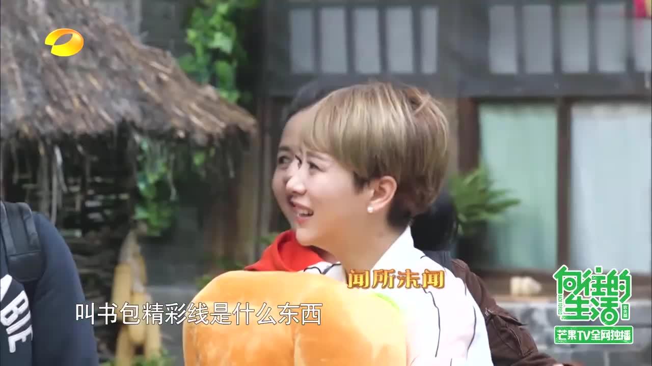 向往:黄磊变蘑菇屋调侃对象,被学生海清攻击,笑坏何炅刘宪华!