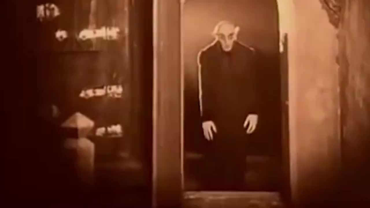 2只狗狗正在看恐怖片,墙上的影子,结果会怎样呢