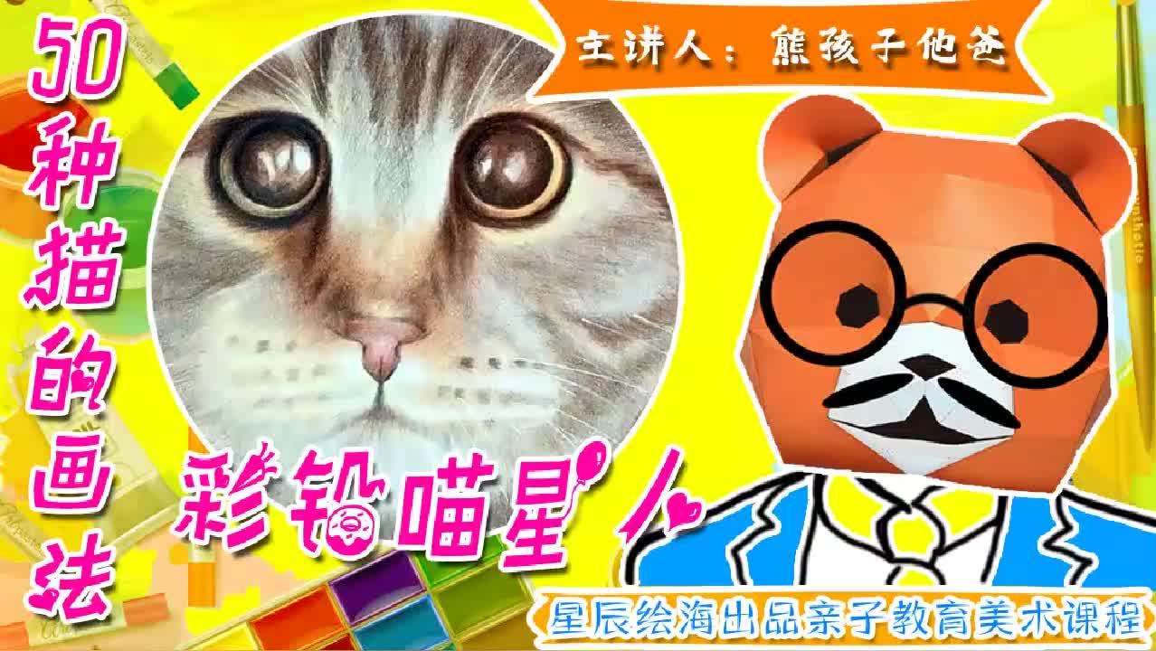 猫的画法画完什么猫都会画油性彩铅写实猫咪