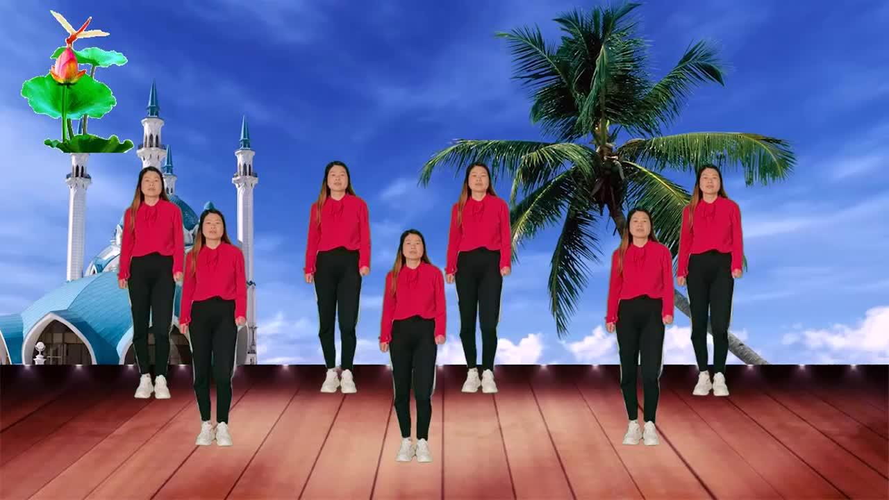 热门DJ广场舞《红枣树》动感旋律,新颖舞步,时尚简单