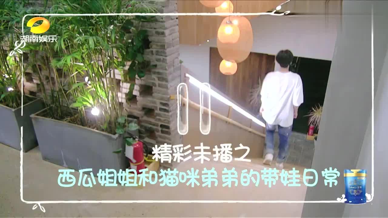 陈哲远初入《小森林》被冷落,郑爽一句话帮他缓解尴尬,太暖!