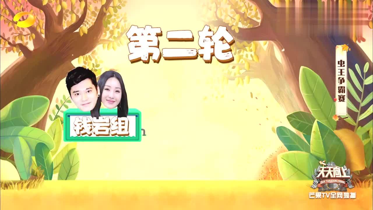安以轩钱枫现场斗蛐蛐,场面相当激烈,把金晨汪涵都惊着了!