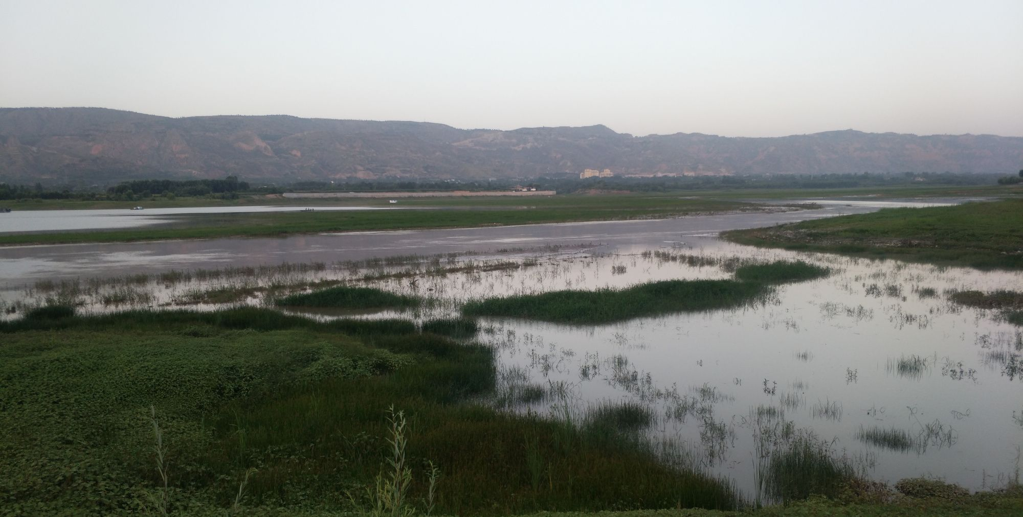 黄河湿地风景欣赏