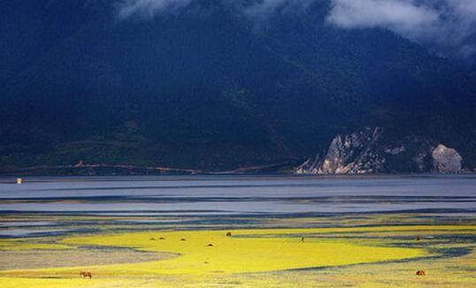 纳帕海,位于香格里拉县城西北部,距县城8公里