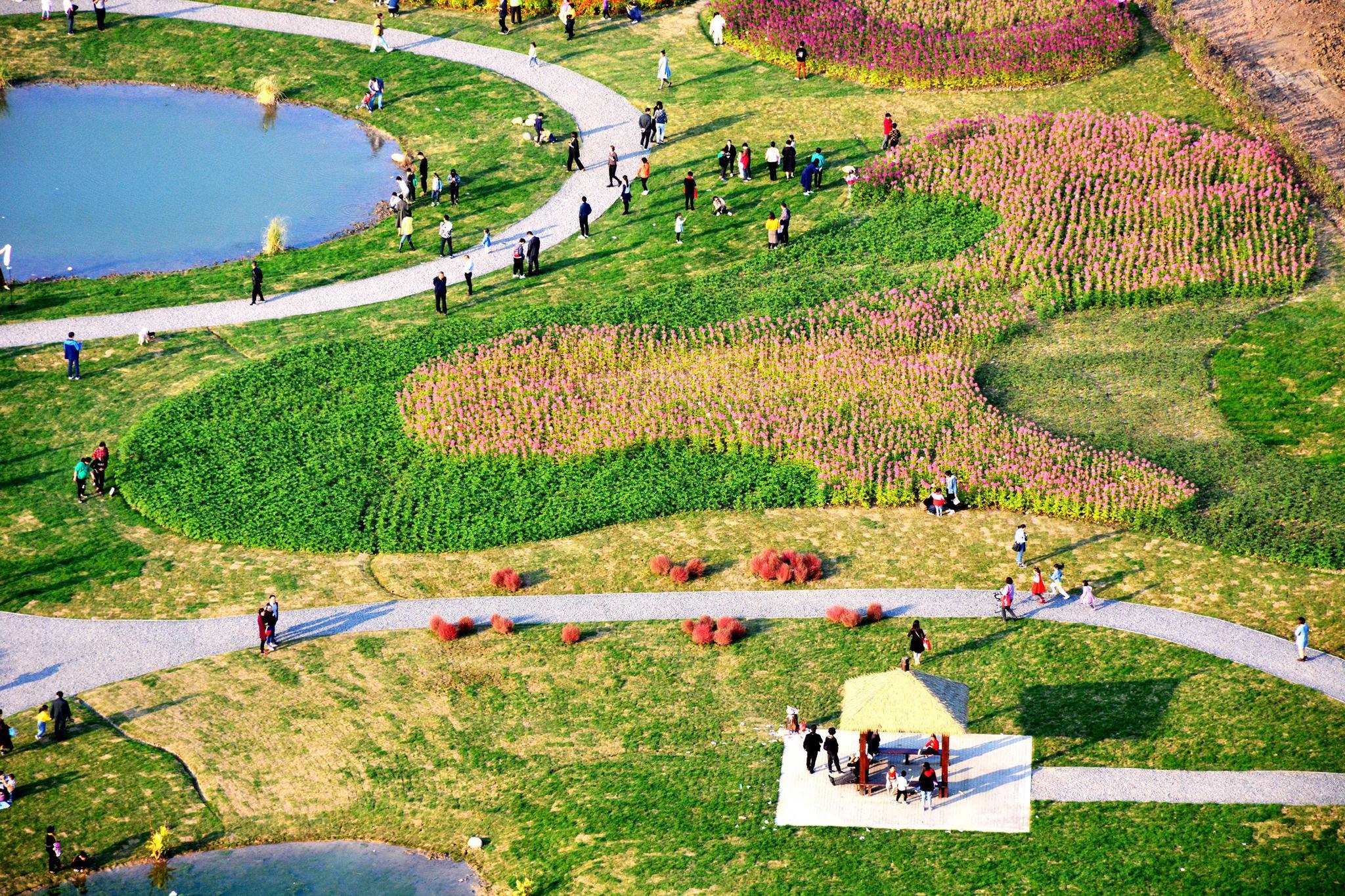 谁把颜料打翻在宛山湖边?成了调色盘,江苏无锡锡山区厚桥街道。