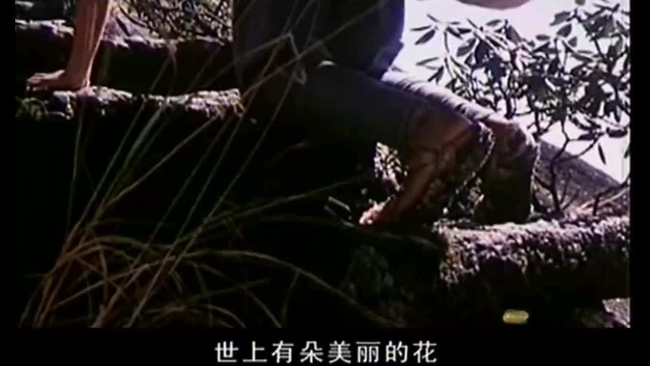 怀旧好声音:李谷一《绒花》,1980年电影百花奖最佳电影音乐