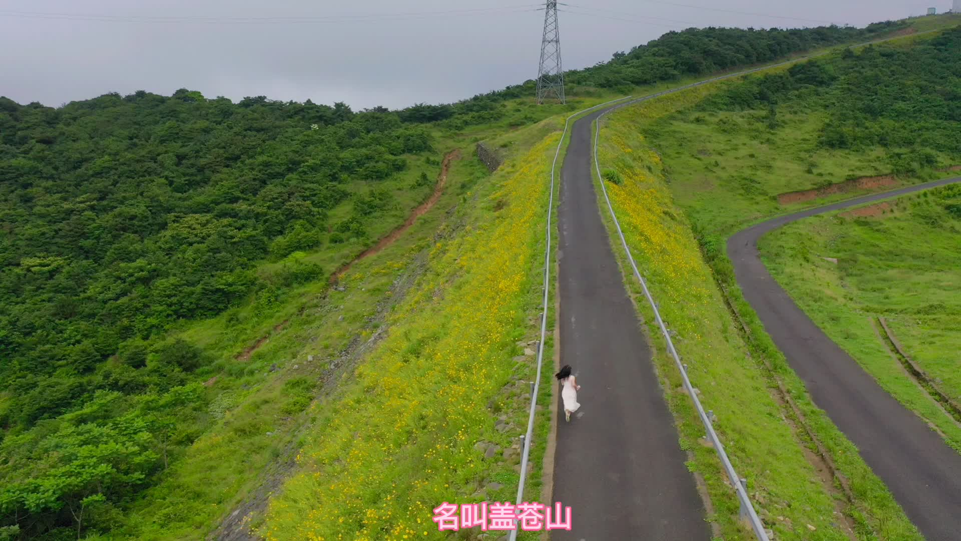 盖苍山,东海云顶风车公路,花开正好