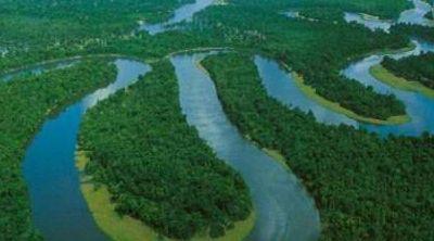 巴西亚马逊雨林——世界上最大的雨林