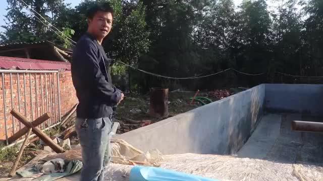 小伙做青储饲料,储存10几亩皇竹草,能行不