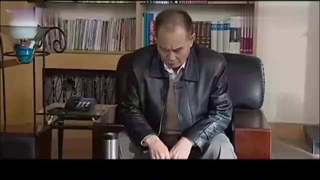 执行局长:中央派调查组下来,副省长想一手遮天,不料直接被带走